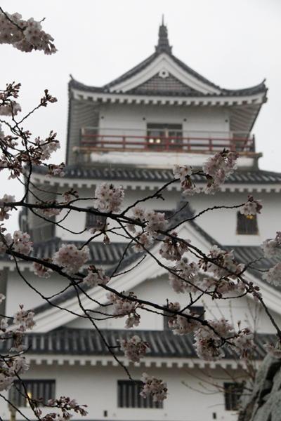 唐津城2.JPG