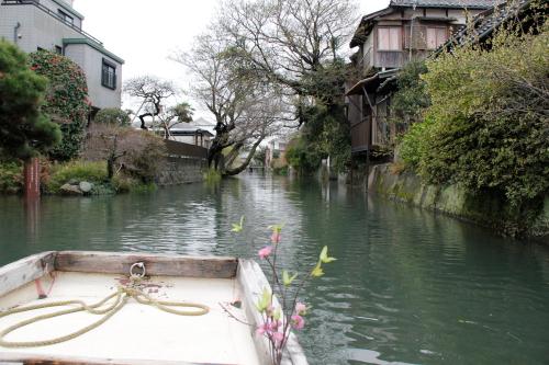 柳川1.JPG